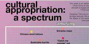 """The title of poster which reads """"Cultural Appropriation: a spectrum"""""""
